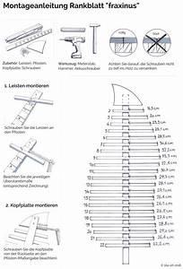 Rankgitter Holz Selber Bauen : gro e design pflanzen rankgitter ranks ule spalier aus ~ A.2002-acura-tl-radio.info Haus und Dekorationen