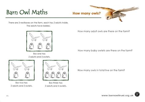 Numeracy Educational Resources
