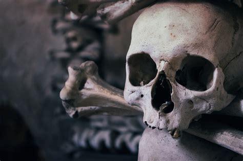 bubonic plague wasnt   deadly  mutation