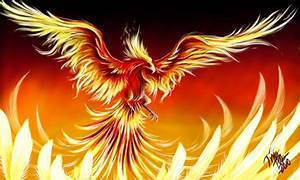 Free Phoenix Download Free Clip Art Free Clip Art On