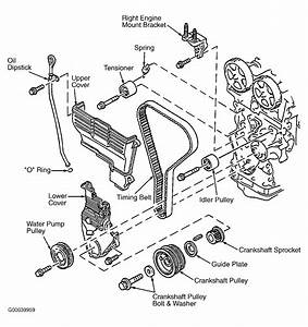 1989 Ford Probe Serpentine Belt Routing And Timing Belt