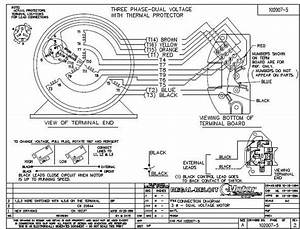 Marathon Electric Motors Wiring Diagram