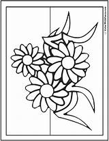 Coloring Daisies Daisy Pages Three Cute Colorwithfuzzy sketch template