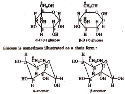 Chair Conformations Of Menthol by 100 Chair Conformations Of Menthol Organic
