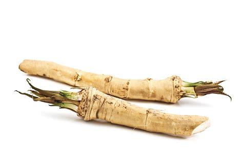 what is horseradish made from horseradish kitchen basics harvest to table