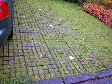 permeable paving options permeable paving option outdoor pinterest driveways public spaces and water management