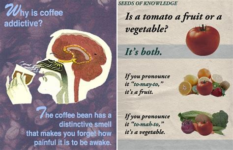 Amazing Little Known Science Facts (12 Photos) - FunCage