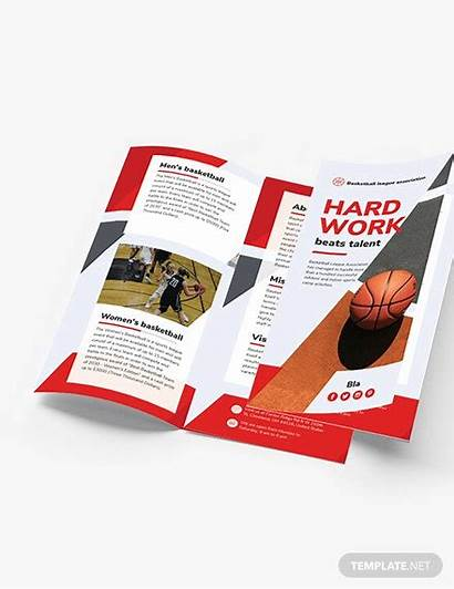 Brochure Basketball Template Fold Tri