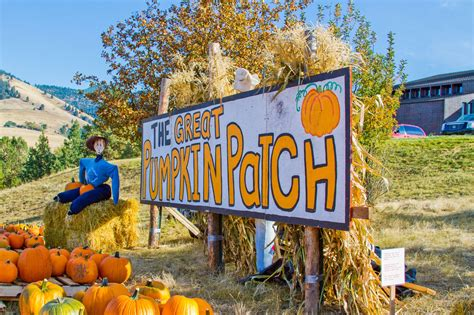 fort wayne desk sergeant number 100 pumpkin patch cleveland mississippi tennessee