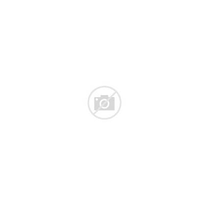 Mouse Pink Brown Clip Ears Tail Clipart