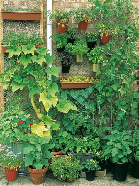 gardening web 10 creative and trendy container garden ideas you ll love to follow balcony garden web