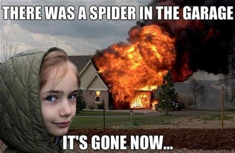 Killing Spiders Meme - the bitter daddy long legs ben s bitter blog