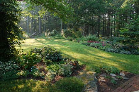 Hosta Gardens in Woods