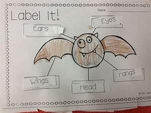 25 Best Images About Kindergarten Labeling On Pinterest