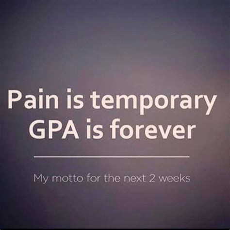 college finals week funny quotes
