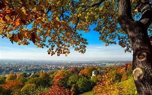 Schöne Herbstbilder Kostenlos : desktop hintergrund herbst kostenlos gallery zalaces ~ A.2002-acura-tl-radio.info Haus und Dekorationen