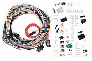 Holley Dominator Efi Wiring Instructions