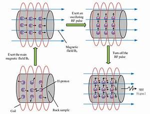 Schematic Diagram Of The Magnetic Resonance Image  Mri