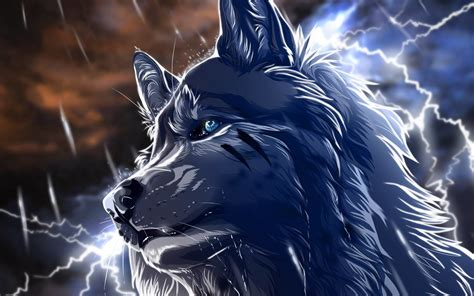 Cool Anime Wallpaper - cool anime wolf wallpapers 56 images