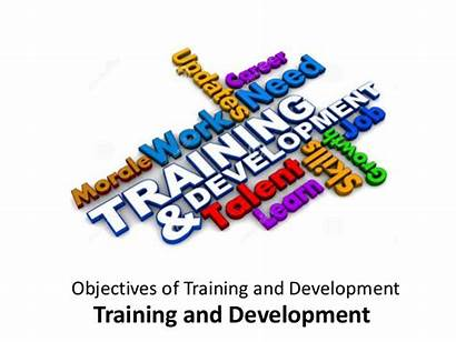 Training Development Objectives Learning Joy Consulting Workplace