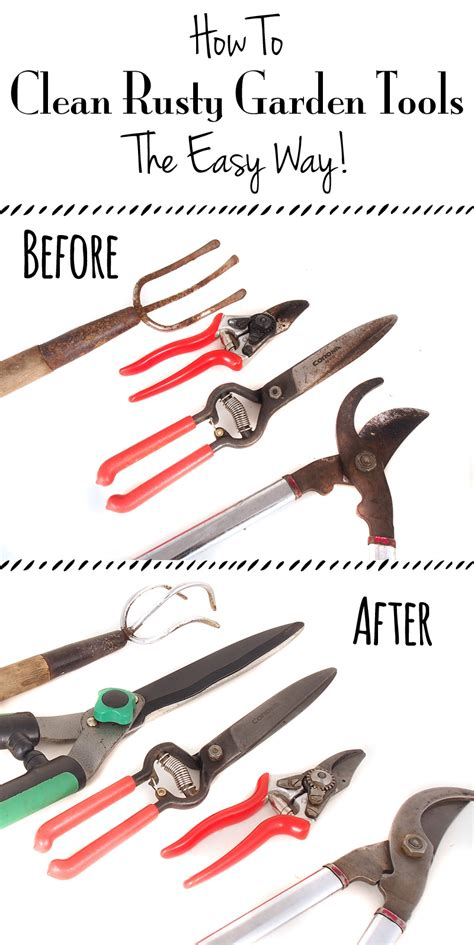 tools garden clean rusty cleaning easy way tool gardening works need growing equipment yard shears landscaping rust gardens projects use