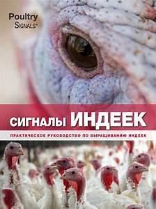 Turkey Signals  9789087403485
