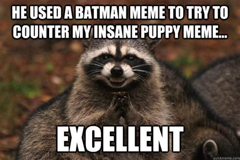 Evil Raccoon Meme - he used a batman meme to try to counter my insane puppy meme excellent evil plotting