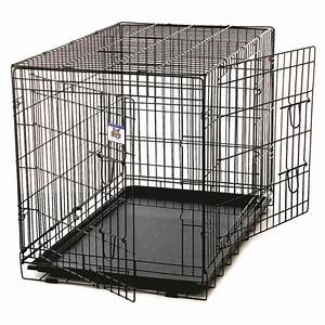pet lodge double door wire dog crate by pet lodge at mills With 2 x 3 dog crate