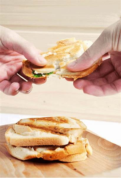Sandwich Cheese Grilled Vegan Gourmandelle Animated Melts