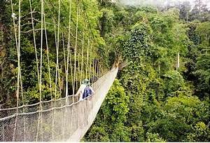 Ten Most Dangerous Bridges of the World | Incredible ...