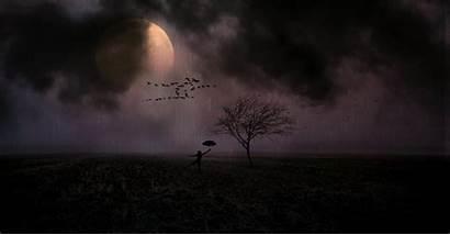 Rain Wallpapers Moonlight Pluviophile