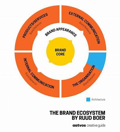 Ecosystem Brand Architecture Adapting Aatvos