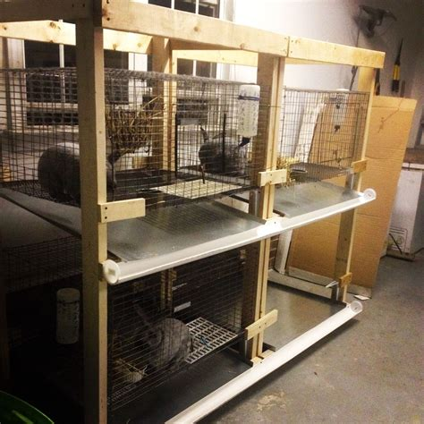 rabbit cages  drop pans angled   droppings roll