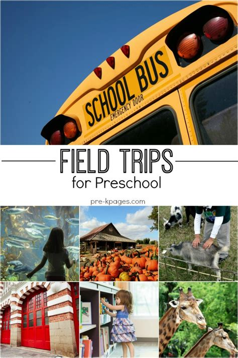 trip ideas field trip ideas for preschool and kindergarten