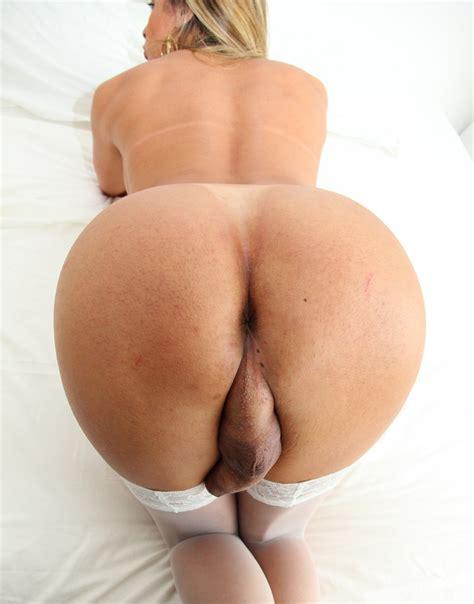 Shemale Ass Hole Photo 2