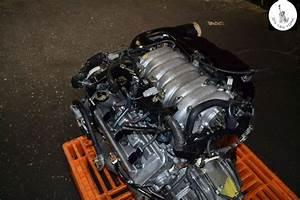 98 99 00 Lexus Gs400 Ls400 Sc400 4 0l V8 Vvt