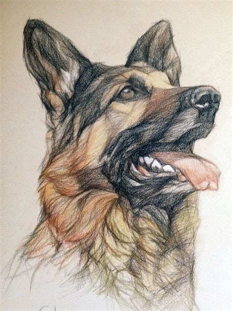 german shepherd tattoo ideas  pinterest