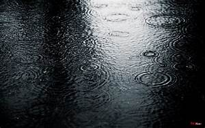 Rain Pictures, Images, Photos