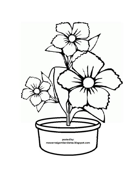 mewarnai gambar 20 mewarnai gambar bunga