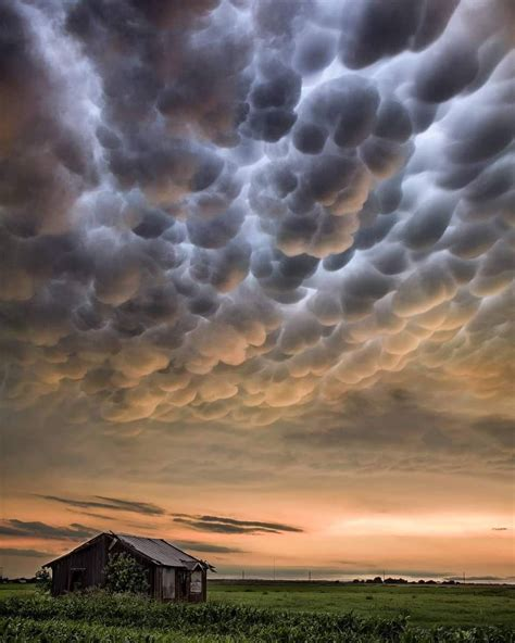 Amazing clouds   Mammatus clouds, Clouds, Clouds photography