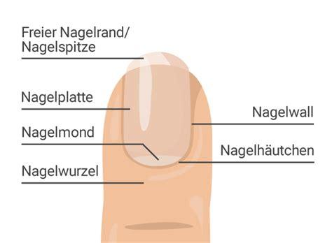 nagelpilz erkennen anzeichen und symptome wwwwas tun
