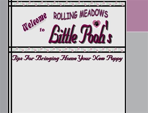 Information Page Home Rolling Meadows Puppies