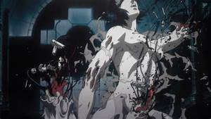 A Philosophical Analysis of Ghost in the Shell (1995 ...