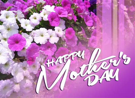 happy mothers day images wallpaper and pictures insanity