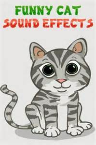 cat sound effects cat sound effects app for android