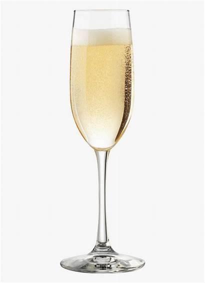 Champagne Glass Transparent Clipart Background Cartoon Flute