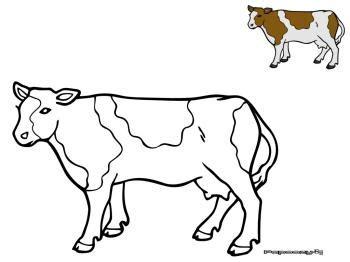 jeu de cuisine gratuit avec coloriage vache catégorie vaches papoozy fr