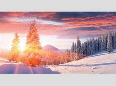 Winter Solstice Facts and Folklore About The Longest