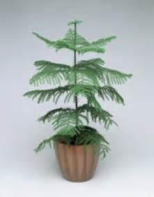 1 christmas tree send christmas tree for any occasion buy christmas tree