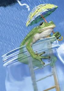 Wetterfrosch Homepage